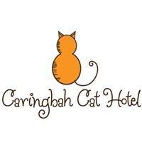Caringbah Cat Hotel