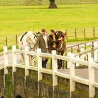 Mount Juliet Equestrian