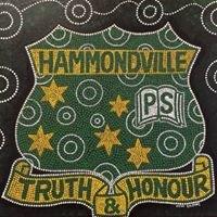 Hammondville Public School