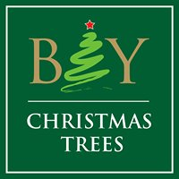 Bay Christmas Trees
