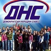 Организација младих ДНС-а Бијељина