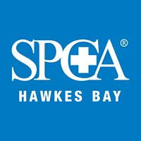SPCA Napier & Hawkes Bay