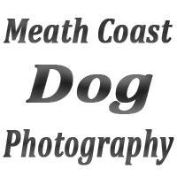 Meath Coast Dog Photography