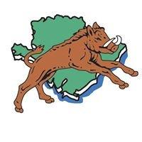 Clwb Rygbi Llangefni Rugby Club