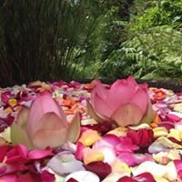 Landsendt - Auckland's Tropical Wedding Destination