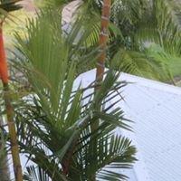 Mandalay Luxury Apartments Port Douglas