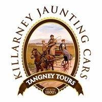 Killarney Jaunting Cars