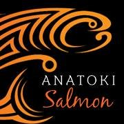 Salmon Fishing at Anatoki Salmon
