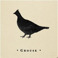 The Copper Grouse
