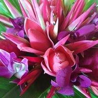 FNQ Blooms