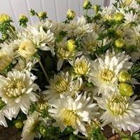 Eastlink Flowers