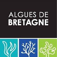 Christine Le Tennier - Algues de Bretagne - Miss Algae