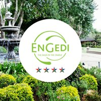 EnGedi - The Oasis in the Cradle