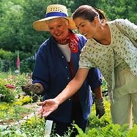 Stargazer Perennials Farm and Nursery