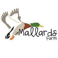 Mallards Farm