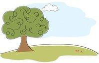 Tree Services Atlanta