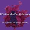 Fundacion Alzheimer España