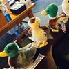 Make Way for Ducklings Store