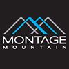 Montage Mountain thumb