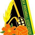 Saskatchewan Broomball Association
