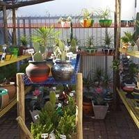 Garden & Plant Gift SHOP