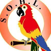 SOHL (Saskatchewan Organization for Heritage Languages)