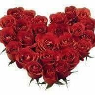 Ridley Park Florist