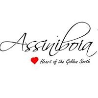 Town of Assiniboia