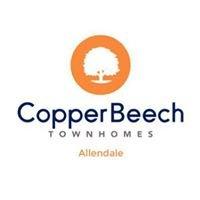 Copper Beech Townhomes - Allendale, MI