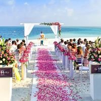 Tonia Timmins - South Pacific Wedding Expert