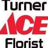 Turner Ace Arlington and Fernandina