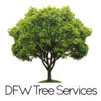 DFW Tree Services