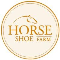 Horseshoe Guest Farm