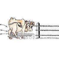 Fences Down: Farmers Market & Homestead Supply