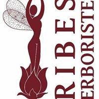 Erboristeria Ribes