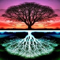 The Herbal Tree