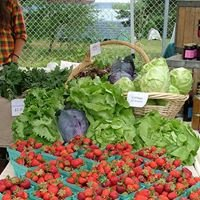Dexter Lake Farmers' Market