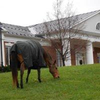 Rappahannock County Library