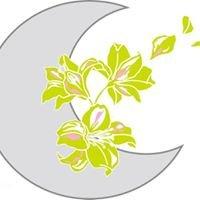 Pétale De Lune