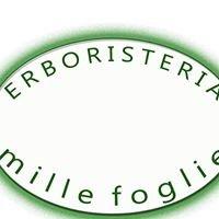 Erboristeria Mille Foglie Sassari