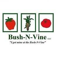 Bush N Vine Rock Hill
