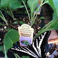 Hayhurst Valley Organic Farm and Nursery