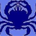 Blue Crab Graphics Screen Printing
