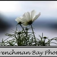 Frenchman Bay Photo