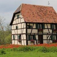 Steinbach Haus Visitors Center