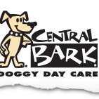 Central Bark Doggy Day Care Broadview Heights