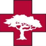 Tree Medics