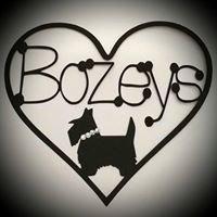 Bozeys