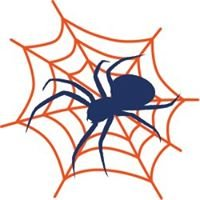 Spidy Tech Solutions Web Design, Marketing, Computer Services