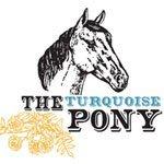 The Turquoise Pony